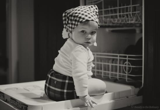 More Dishwasher Fun