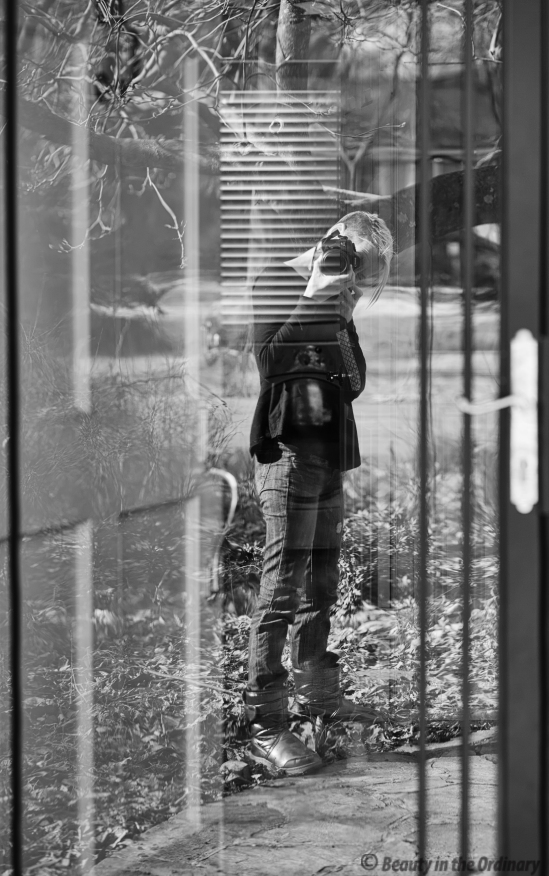 Self Portrait in Reflection