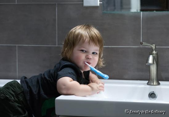 We Like to Brush Teeth